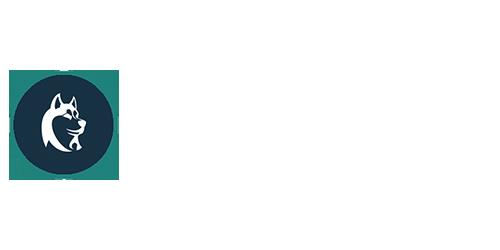 My Curious Canine